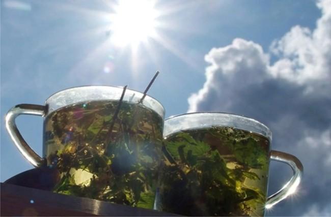 gorąca herbata na słońcu