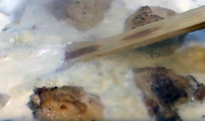 Sos śmietanowy ze świeżymi i suszonymi grzybami