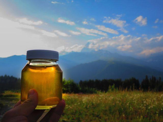 Miód górski: przydatne właściwości i przeciwwskazania, opis, rodzaje, recenzje, zdjęcia