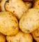Ziemniaki Adretty: opis gatunku, zdjęcia, opinie tych, którzy wsadzisz