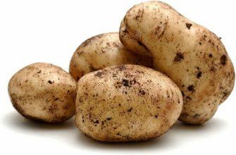 Zawartość kalorii w ziemniakach gotowanych na różne sposoby